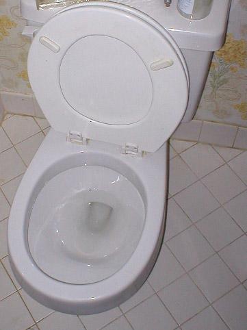 Mr. Davidson's Toilet